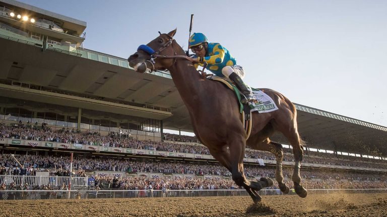 American Pharoah Makes History (Photo Credit: Newsday)